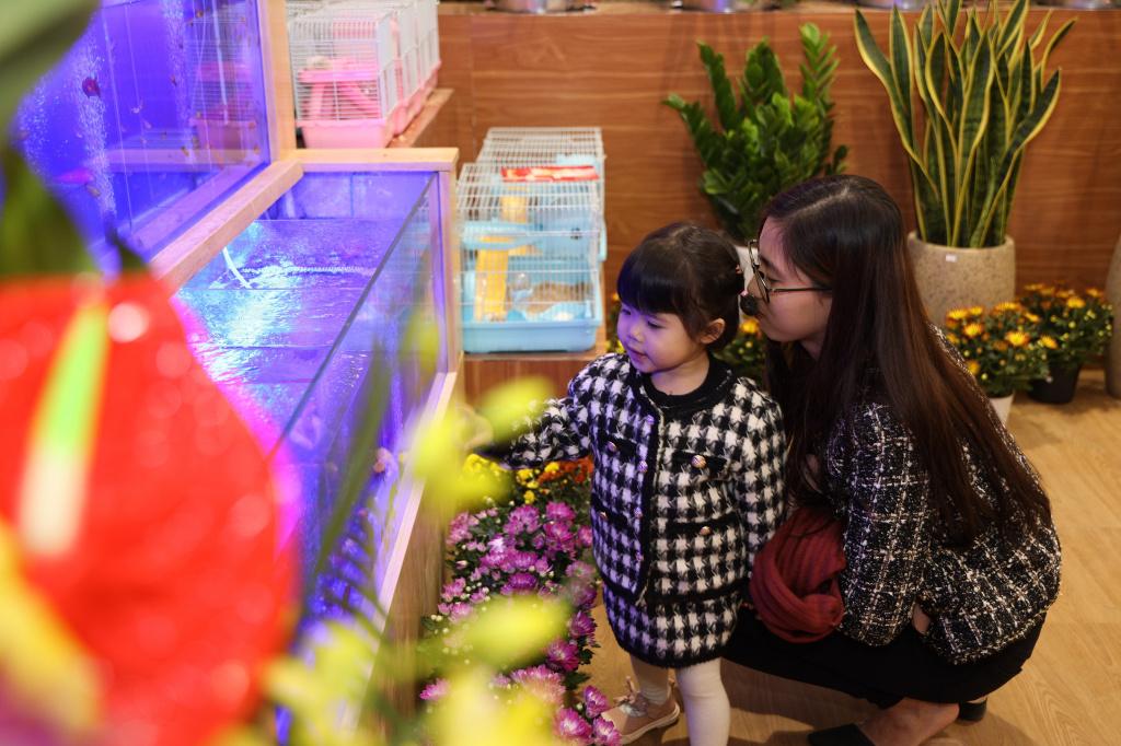 Bể cá tại khu vực hoa và cây cảnh - resize.jpg